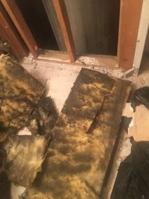 Mold Removal in Tarrytown, NY (1)