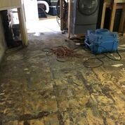 Content Cleaning and Mold Remediation in Armonk, NY (2)